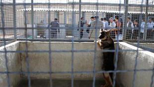 IRAN - ADEL ABAD PRISON