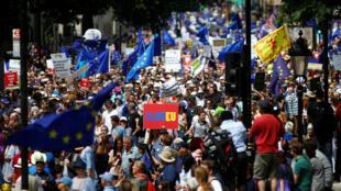 Акция сторонников единой Европы собрала в Лондоне несколько десятков тысяч человек, 23 июня 2018 года
