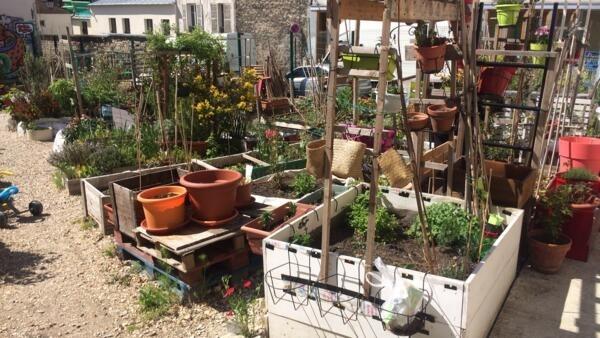 Jardim Cité d'Aubry tem mais de 100 sócios e até bananeira plantada.
