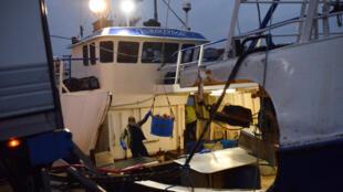 Một tàu đánh cá chuyển hải sản thu hoạch được xuống bến ngay cạnh chợ cá Grimsby, ở thành phố Grimsby, miền bắc Anh Quốc. Ảnh chụp ngày 09/01/2017.