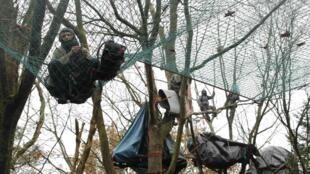 Opponents camp in trees at the Notre Dame des Landes site. File.