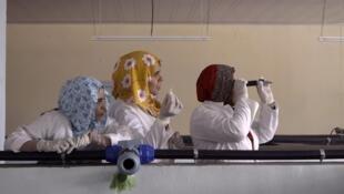 « Solo Son Peces », (« Ce ne sont que des poissons »), documentaire d'Ana Serna et Paula Iglesias, en compétition au Fipadoc 2020.