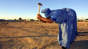 La désertification, un fléau pour l'Afrique.