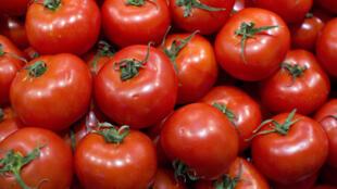 La tomate, le nouvel «or rouge» dont la Chine concentre 30% du commerce.