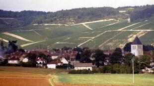Região de Champagne, no nordeste da França, é onde se produz o espumante francês mais apreciado no mundo.