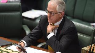 資料圖片:澳大利亞總理特恩布爾。攝於2016年11月9日澳大利亞國會。