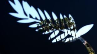 На главный приз Каннского фестиваля в этом году претендует 21 фильм