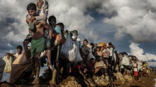 Des milliers de réfugiés rohingyas ont fui leurs villages, marché pendant des jours et enfin franchi la frontière. Épuisés, ils continuent en traversant des rizières.