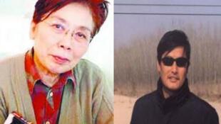 中国著名作家章诒和呼吁当局将陈光诚当人对待。