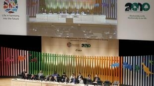 Conferência das Nações Unidas sobre Biodiversidade reúne ministros do meio ambiente e representantes de mais de 190 países, incluindo o Brasil, em Nagoya, no Japão.