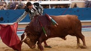 Spanish matador Daniel Luque performs a pass on a Pedraza de Yeltes bull at Marcel Dangou arena, in Bayonne, southwestern France, on August 14, 2019.