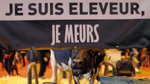Слоган «Я животновод, меня гибель ждет!» на сельскохозяйственном салоне в Париже, 29 февраля 2016.