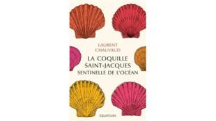 Couverture du livre «La coquille Saint-Jacques, sentinelle de l'océan», de Laurent Chauvaud.