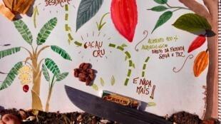 La ferme Selva e Paz - Alimentos Agroflorestais au Brésil inspire tellement qu'elle donne envie de créer. Qui veut goutter les délicieuses «Barinhas» cacao cru et bananes déshydratées sur cette œuvre agroécologique ?