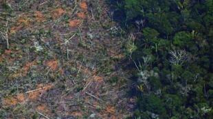 De acordo com dados do INPE, o tamanho da área da Amazônia sob alerta de desmatamento bateu recorde no mês de junho de 2020.