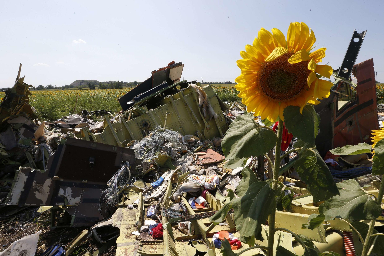"""Обломки разбившегося недалеко от поселка Грабово малайзийского """"Боинга"""", 26 июля 2014 г."""