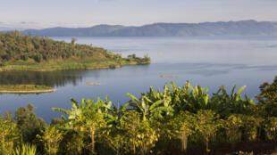Les bords du lac Kivu, RDC.