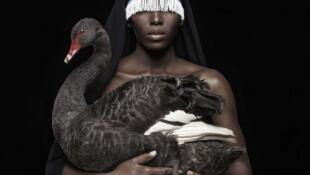 """""""This is not a black swan"""" (détail) (2016), oeuvre de l'artiste sud-africain Justin Dingwall (né en 1983 à Johannesburg). Photographic Giclée print on 100 % cotton fine art paper. AO edition 8/10. Oeuvre exposée sur le stand de la galerie artco à l'Akaa."""