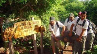 Par mesure de sécurité, Georges le Solitaire, dernière tortue géante de son espèce, a été évacué des Galapagos en même temps que les populations équatoriennes, après le tsunami du 11 mars au Japon.