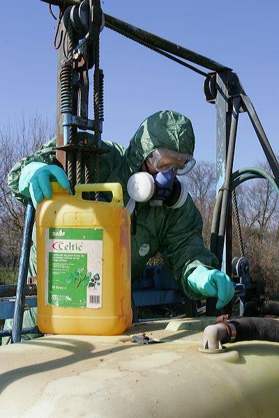 Uso doméstico de agrotóxicos é perigoso para a saúde, dizem especialistas.