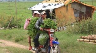 L'accaparement des terres par des proches du régime aurait fait 700 000 victimes depuis 2002 au Cambodge.