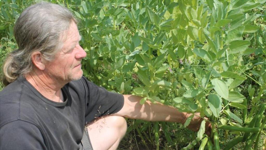 Iain Tolhurst dans sa ferme Tolhurst Organic. Il n'utilise aucun produit chimique, ni fumier animal. Il soigne ses cultures avec les plantes.