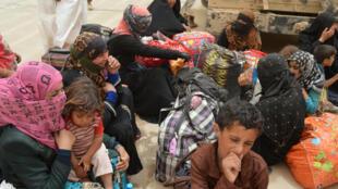 Moradores de Faluja eram utilizados como escudos humanos pelo grupo Estado Islâmico.