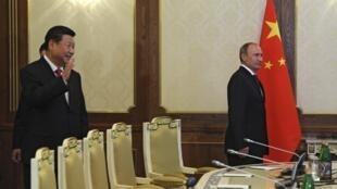 Tổng thống Nga Vladimir Putin (P) và Chủ tịch Trung Quốc Tập Cận Bình  bước vào hội đàm song phương tại Dushanbe ngày 11/9/2014.