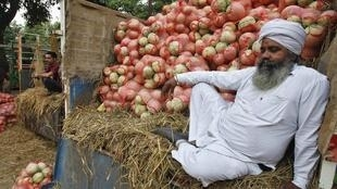 A farmer sits on a trolley loaded with melons as he waits for customers at a fruit and vegetable market in the northern Indian city of Chandigarh May 30, 2014.