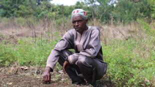 L'agriculture familiale et originale, dans le champ de M. Bah en Guinée. Octobre 2016.