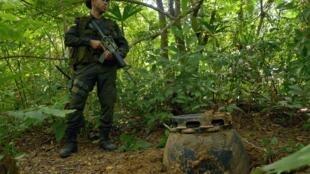 Un soldado vigila una plantación de coca en Acani, en el noroeste de Colombia.