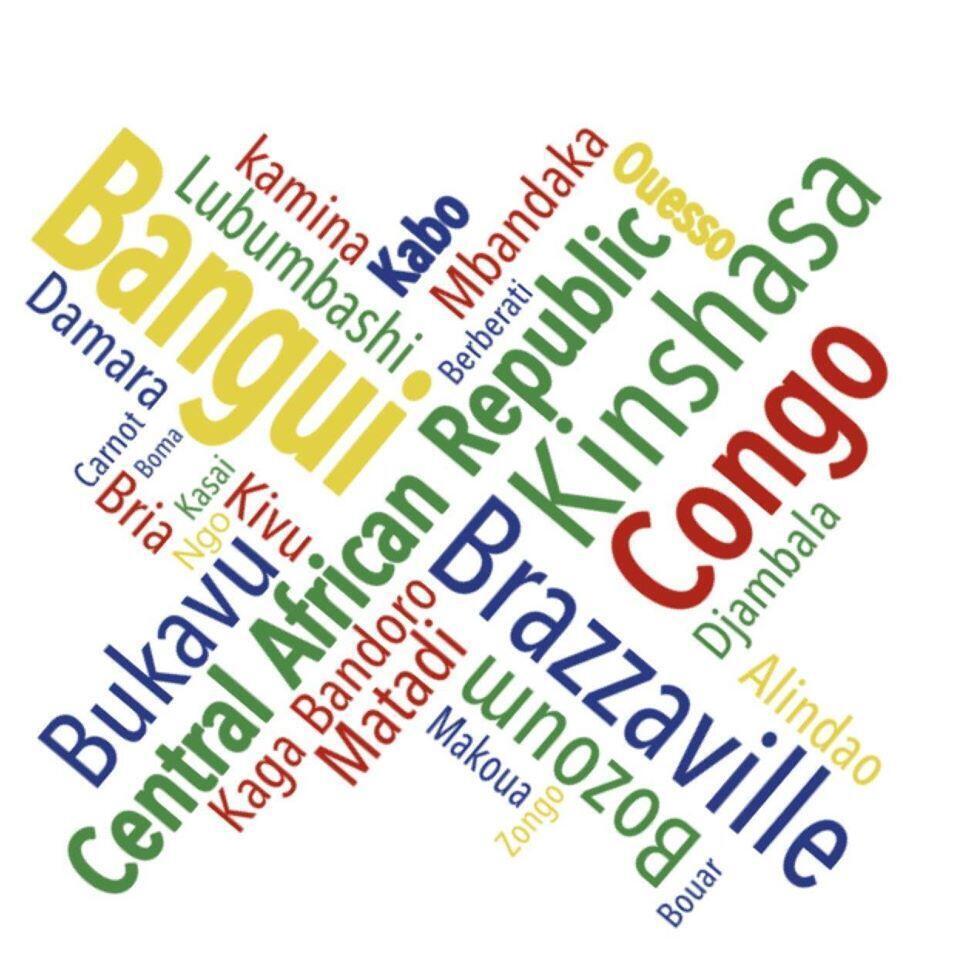 On trouve la traduction française de 15 000 mots en lingala et 8 000 en sango dans ce dictionnaire.