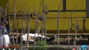 荷蘭中部城市一電車內發生槍擊一人死亡