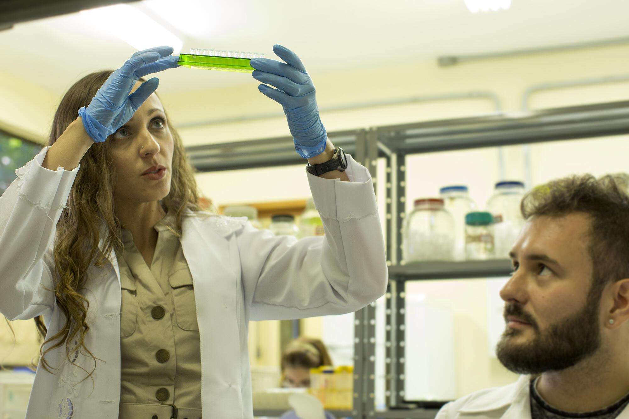 A bióloga trabalhando em seu laboratório