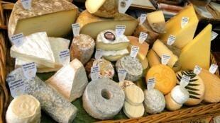 種類繁多的法國奶酪