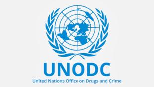 بنا به گزارش دفتر مقابله با مواد مخدر و جرم سازمان ملل متحد(UNODC) که مقر آن در شهر وین پایتخت اتریش واقع شده است، تولید جهانی مادۀ مخدر کوکائین در سال ٢٠١٧ میلادی، به ٢ هزار تُن رسیده و با ٢٥ درصد افزایش نسبت به سال ٢٠١٦ میلادی، به رکوردی تاریخی دست یافته