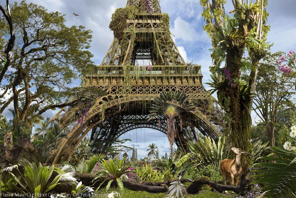 """Paris #4 Make Our Planet Great Again"", 2017."