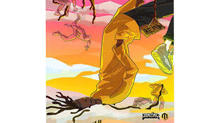 La pochette du premier album de Rema.