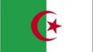 Tutan kasar Algeriya