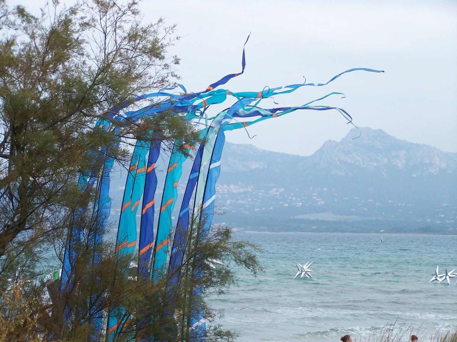 Le festival du vent à Calvi.