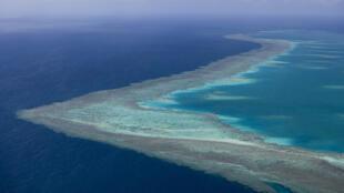 La Grande Barrière de corail est menacée par l'élargissement du port de mineralier d'Abbot Point sur la côte du Queensland, au nord est de l'Australie.