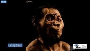 Retrato del Homo Naledi cuyo descubrimiento fue anunciado este jueves 10 de septiembre en Maropeng, Sudáfrica.