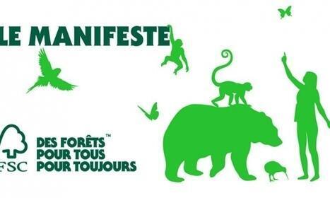 法國森林管理協會(FSC France)繼續行動為充分保護森林做努力