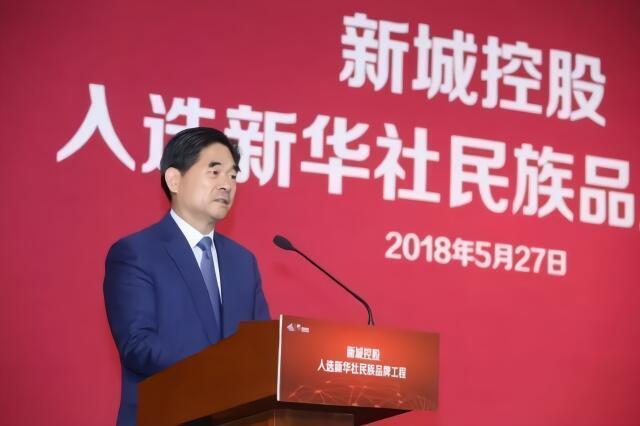 图为中国官方网络刊王振华会议照