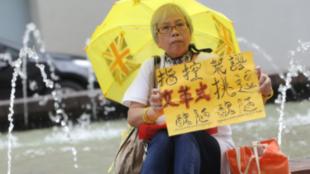 """香港市民""""王婆婆""""王凤瑶资料图片"""