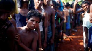 Distribuição de comida para os refugiados rohingyas em Bangladesh.
