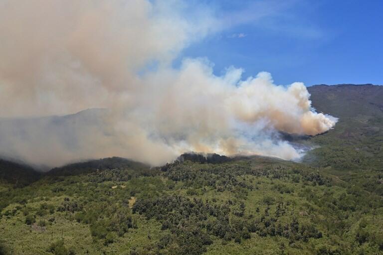 Le parc national du Mont Kenya est ravagé par les flammes depuis le 23 février 2019.
