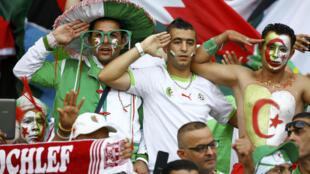 Argelinos prestam continência, saudação militar, durante a execução do Kassaman (o juramento), hino nacional da Argélia. Porto Alegre, 22 de junho de 2014.