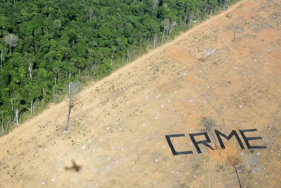 O desmatamento na região da Amazônia brasileira. Ecocídio?