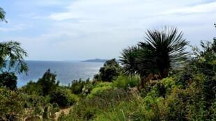 Le paysagiste Gilles Clément a imaginé le Jardin des Méditerranées il y a 30 ans.